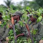 Nyantura Milice des Serufuli