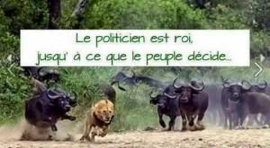chasser les mauvais politiciens