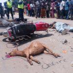 3 personnes et 3 chèvres écrasées par un véhicule de la Monusco à Beni-Oicha